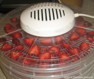 Strawberries in dehydrator.